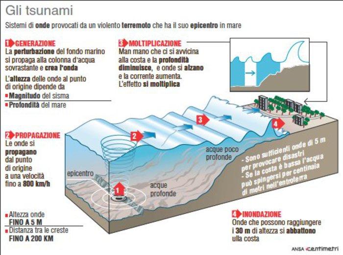 Tsunami Nuova Zelanda